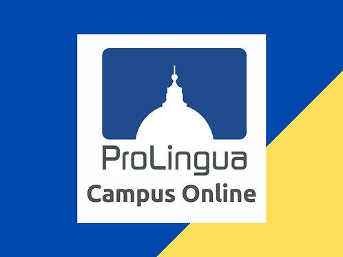 Campus Online 12 mesi