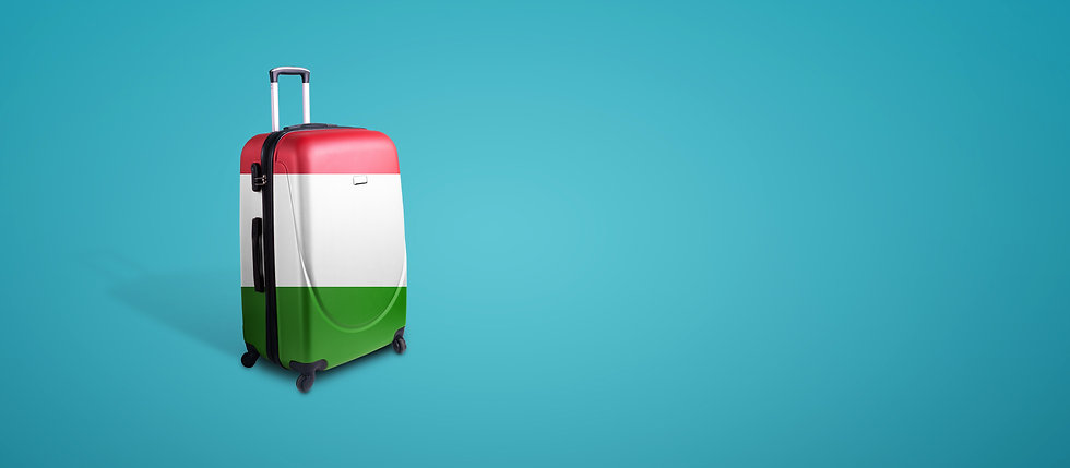 travel-suitcase-with-flag-italy.jpg