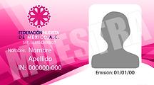 Credencial FNM 2
