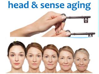 Bio-identical Hormonal Therapy