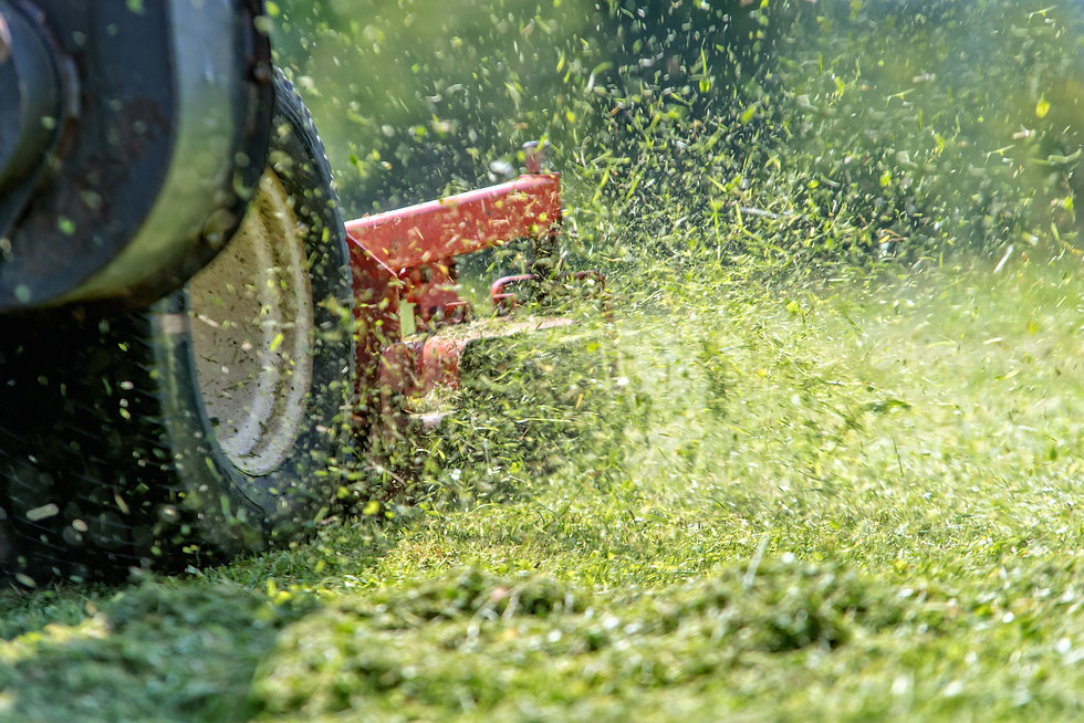 lawnmower at work.jpg