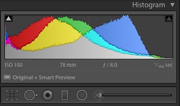 Histogram in Photography