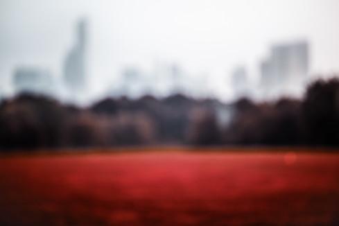 Crimson Lawn