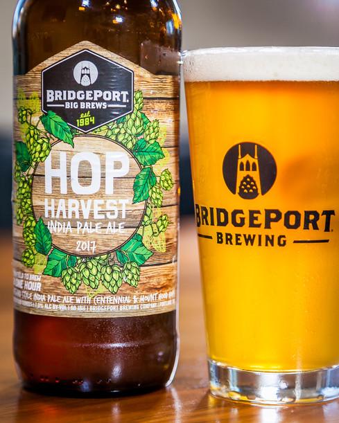 Hop Harvest IPA 002.jpg