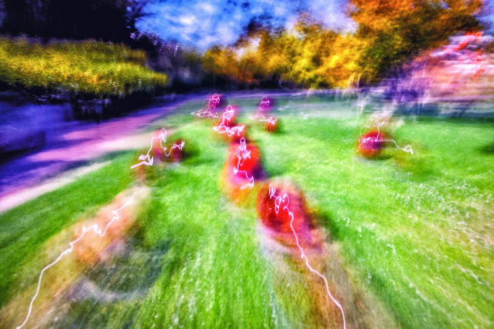 Electric cherries