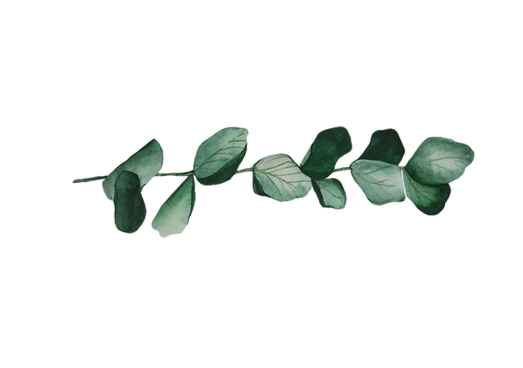 eukaliptusz_print.png
