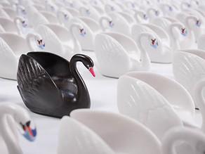 Un Cisne negro en medio de un escenario impredecible