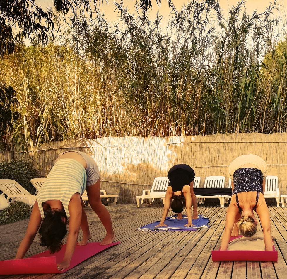 Cours de yoga collectif