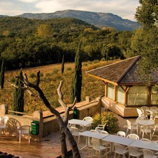 vegetarian-restaurant-groups-lodging-pro