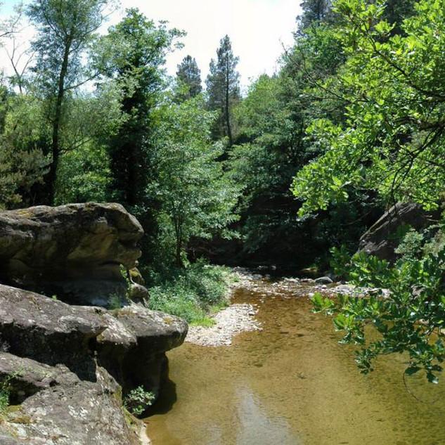 Rivière_domaine_du_Taillé.jpg