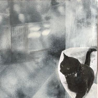 Celle qui rêvait de s'échapper du centre-ville pour retrouver sa liberté, Koshka, la chatte du 9e étage, rue Duke, Vieux-Montréal