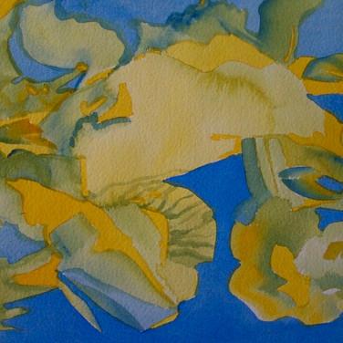 Flore provençale