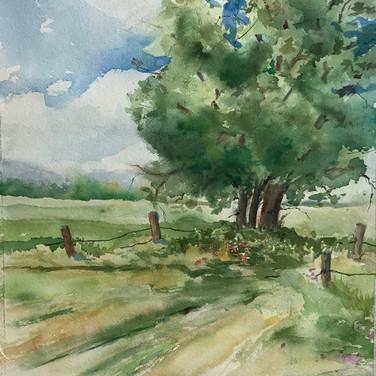 À l'Île d'Orléans, chemin du Mitan