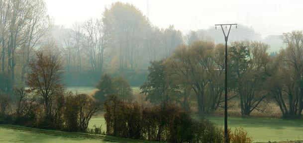 osterwald-felder-nebel.jpg