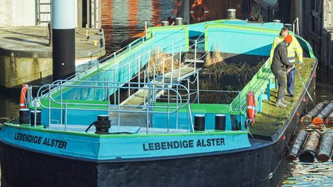Grüne Schute im Alsterfleet