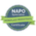 NAPO-Productivity-Badge-030519.png