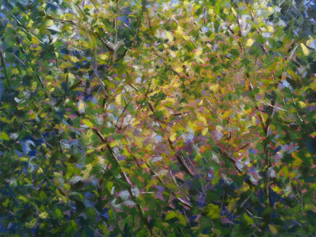 Through the Trees - Pastel Painting