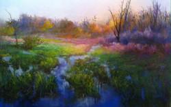 Marsh Meadow Morning