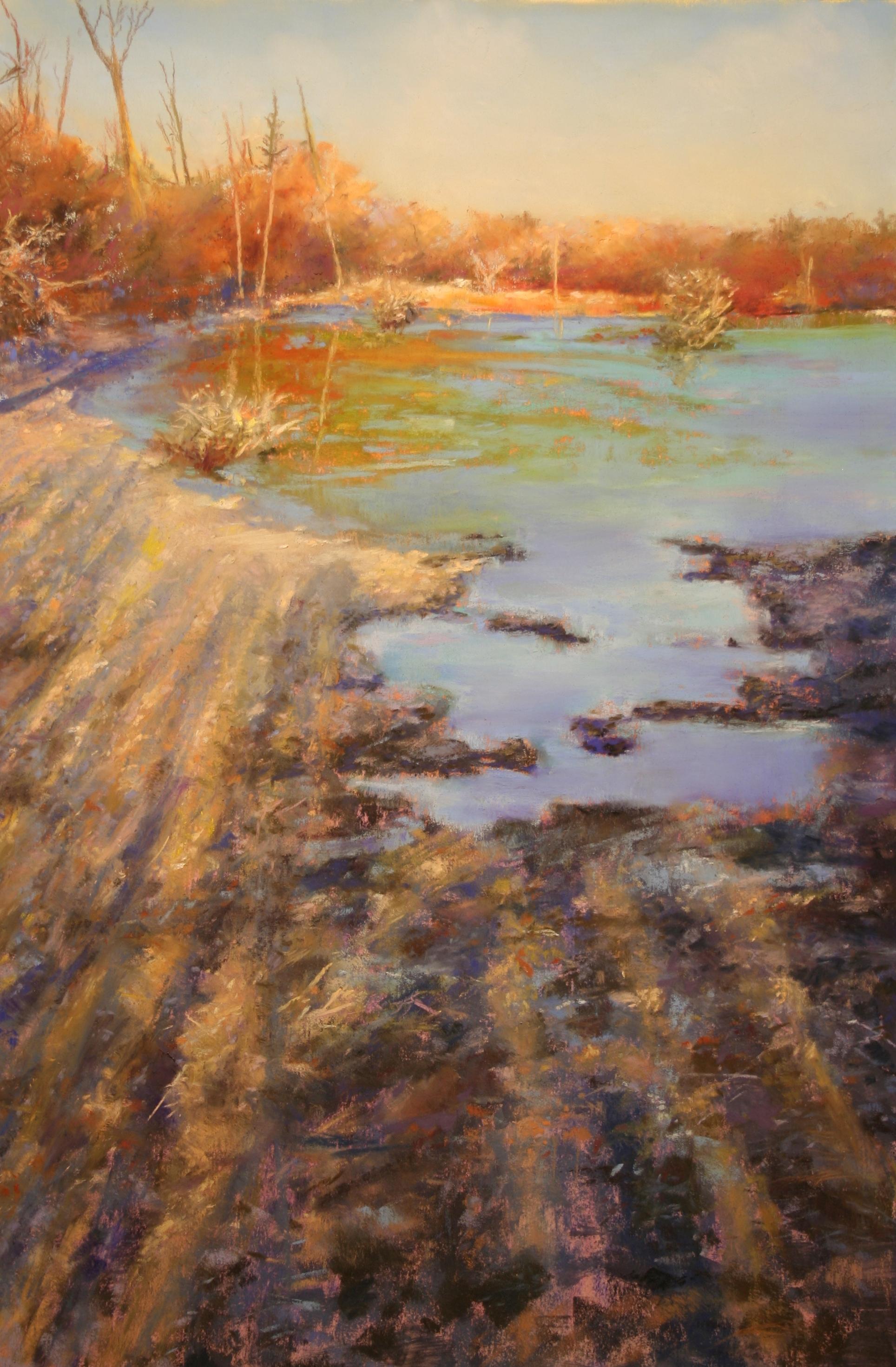 Icy Morning Shadows