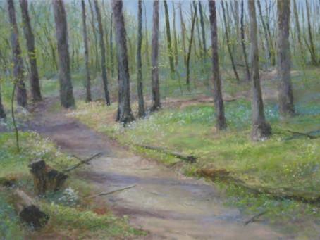 Pastel Painting: Tuesday's Trillium