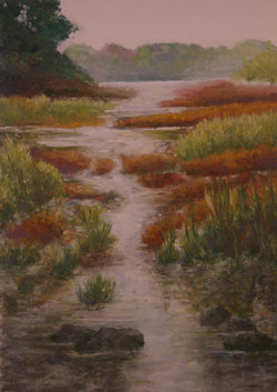 Kensington Marsh