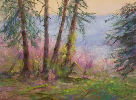 Pastel Painting: Under the Pines at Lake Quinault