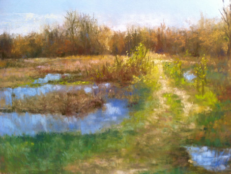 Pastel Painting - Pittsfield Preserve