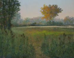Daybreak at Marton Road Field