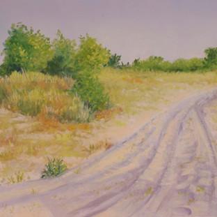 Dunes Road at Marion Walk