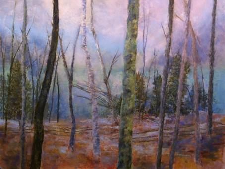 StudioSense: Seeing the Lake through the Trees
