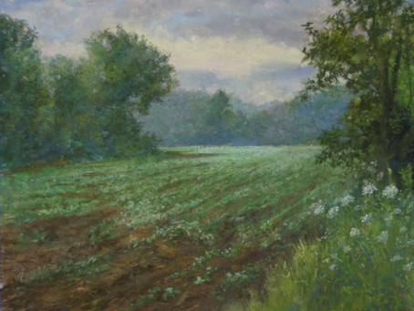 Pastel Painting: Early Spring Soybeans
