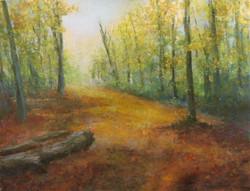 Marsh Meadow Park Autumn