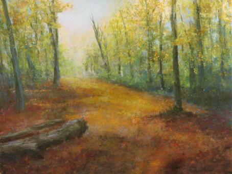 Marsh Meadow Park  - Autumn