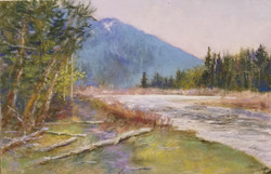Hoh River, Olympic National Forest