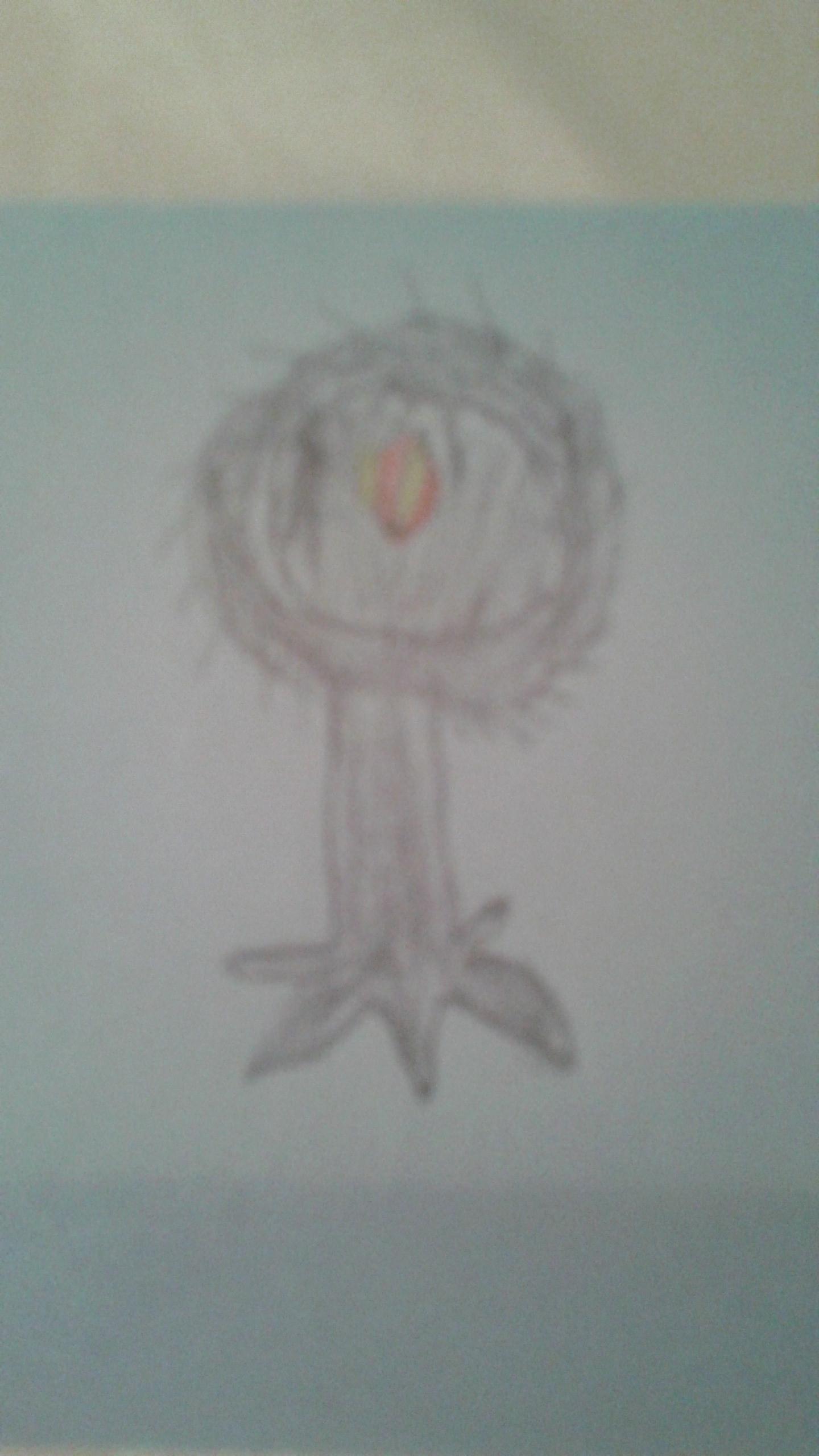 Kyle Walls - The Pan Tree