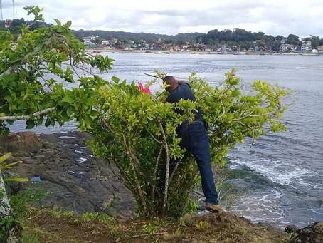 Prefeitura de Itacaré continua ações delimpeza e organização das praias