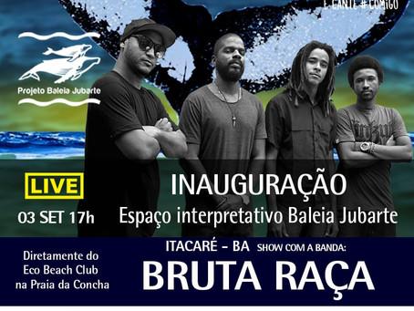 Assista inauguração do espaço interpretativo Baleia Jubarte de Itacaré