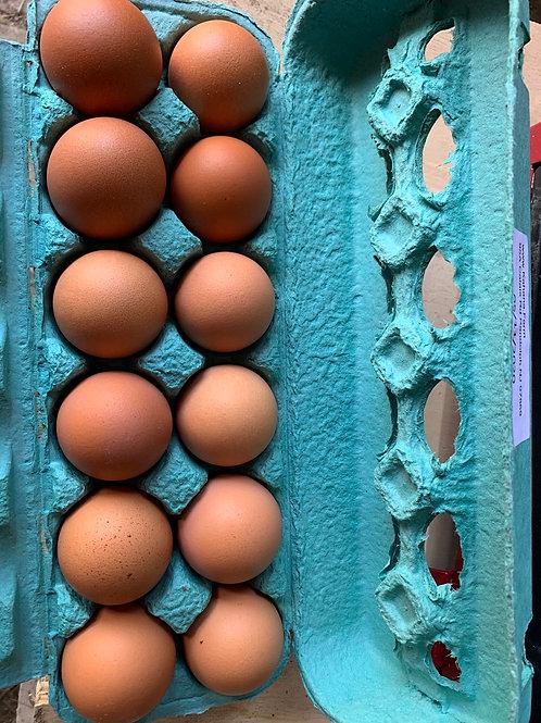 Free-Range Chicken Eggs