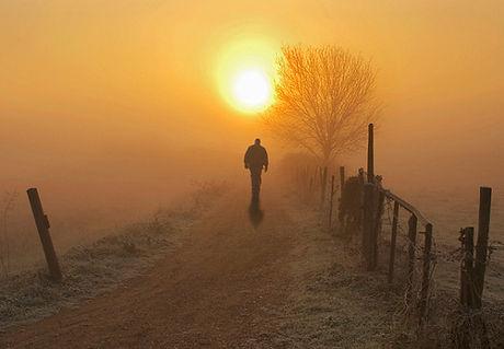walking (1).jpg