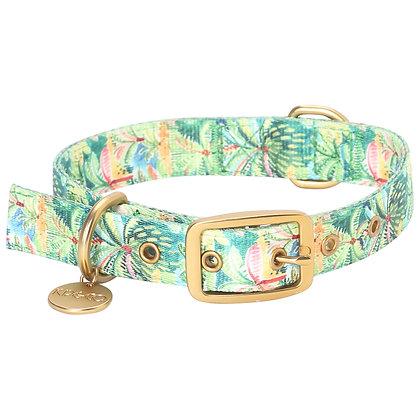 Kip & Co - Columbo Dog Collar