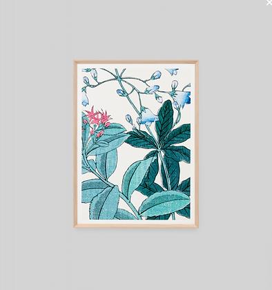 Print Bellflower Woodblock 1