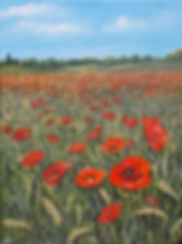 Poppies in the cornfield AF.jpg