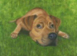 Painted portrait of a dog lying down