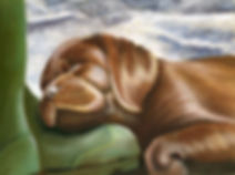 Painted porait of a sleeping dog