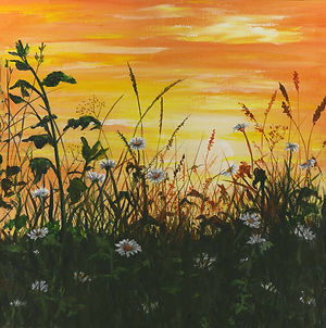 daisies in the sunset painting