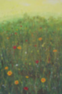 Flower painting in acrylics Meadow sweet sm.jpg