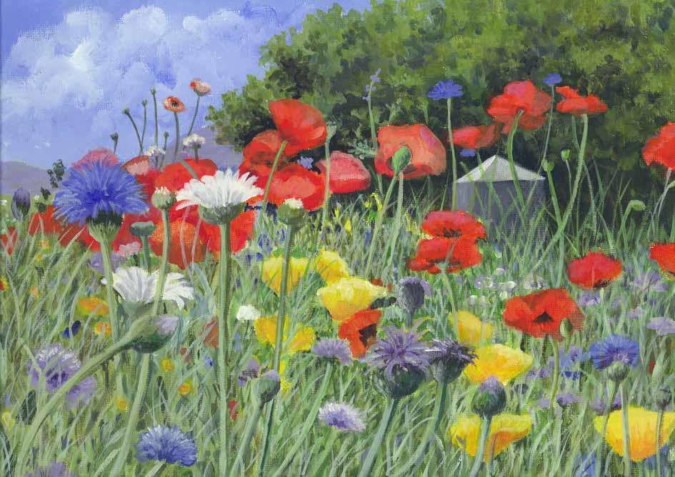 wild flowers sm