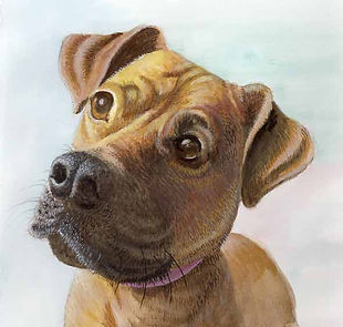 Painted portrait of Listening dog