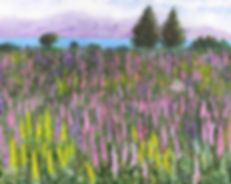 painting L:ake Tekapo with lupins