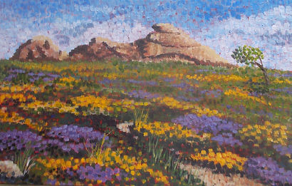 Haytor in Summer sm.jpg
